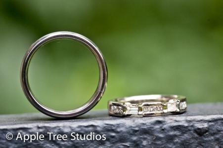 Apple Tree Studios (Broomal Wedding)71