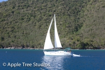 Apple Tree Studios Sail Mag06