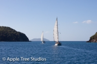 Apple Tree Studios Sail Mag07