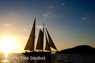 Apple Tree Studios Sail Mag18