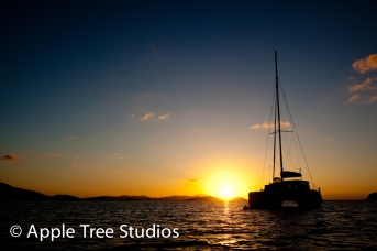 Apple Tree Studios Sail Mag20