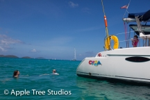 Apple Tree Studios Sail Mag34