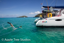 Apple Tree Studios Sail Mag36