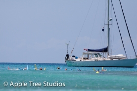 Apple Tree Studios Sail Mag44
