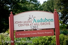 John James Audubon Wedding01
