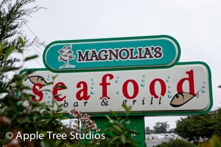 magnolias Rehoboth Wedding-1