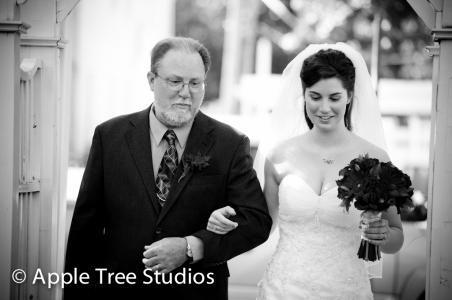 Apple Tree Studios-1-20
