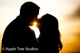 Apple Tree Studios-1-5