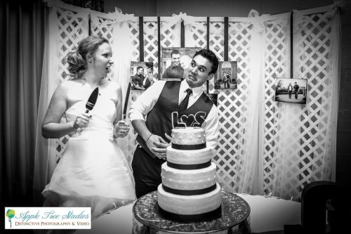 Chicago Wedding Photographer-17