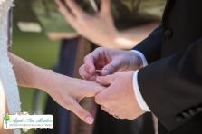 Zoo Wedding-15