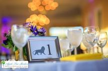 Zoo Wedding-20