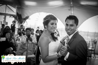 Cambodian Wedding Photographer Chicago-21