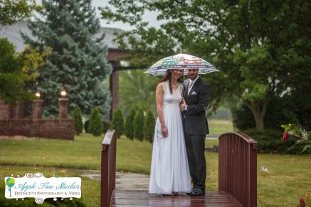 Croatian Centre Merrillville IN Wedding-10