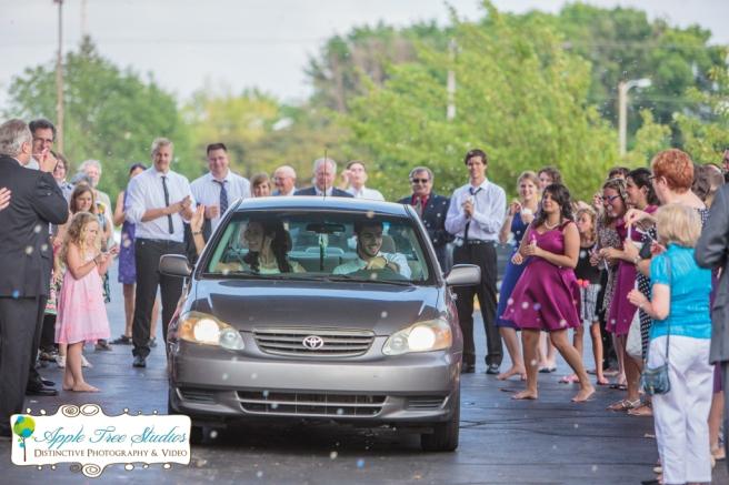 Croatian Centre Merrillville IN Wedding-24