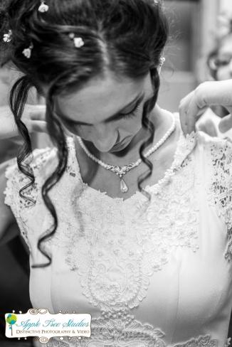 Croatian Centre Merrillville IN Wedding-7