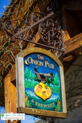 Onion Pub Brewery Lake Barrington Il Wedding Apple Tree Studios Blog