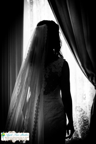 Joliet Wedding Photographer-6