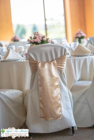 Centennial Park Munster IN Wedding Photographer-6