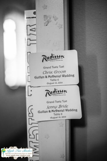 Radisson Hotel Merrillville Wedding04