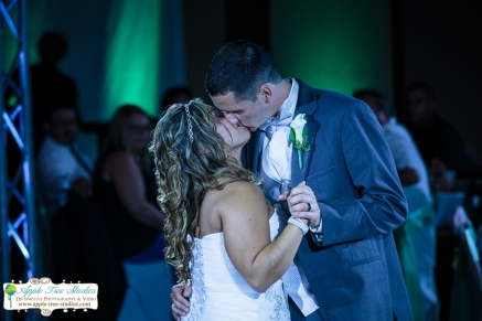 Radisson Hotel Merrillville Wedding32