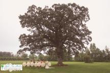 Apple tree Studios-93